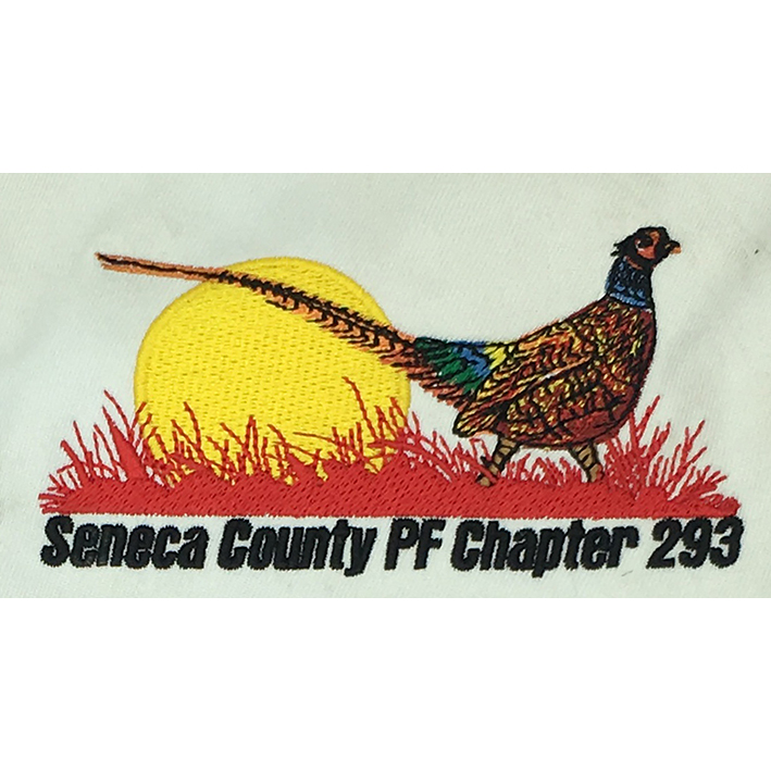 Pheasant Featured Image