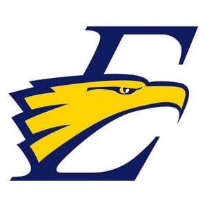 eagle logo vector conversion service